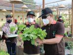 Terinspirasi Kembang Kenari, Bupati Launching 'Kebun Kita' | Politik
